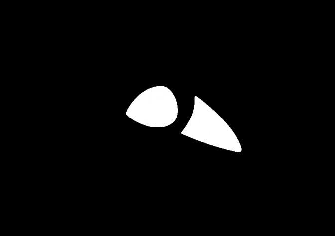 سندروم ه دو چشم