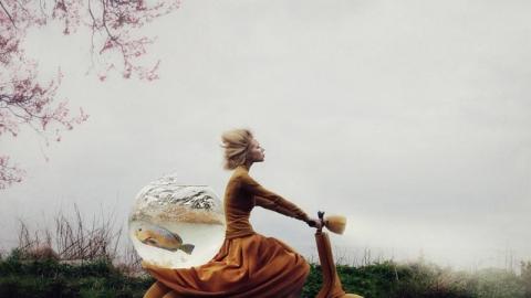 کایلی اسپار عکاس استونیایی